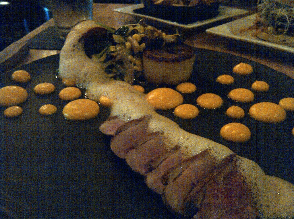 Duck duo: sliced duck breast and duck confit (wrapped in gnocchi dough), miso ginger foam, carrot truffle sauce, warm mixed salad ~ $22